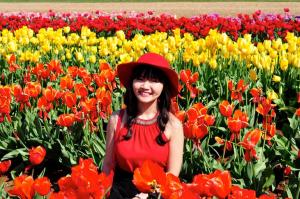 Thu Tulips